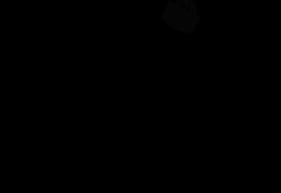 satellitelibri